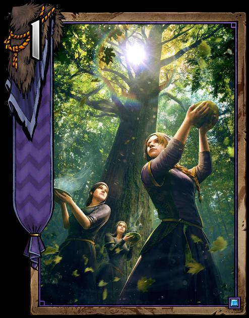 Kapanka Freyi  Gwent cards  igrozabor