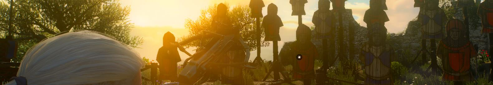 witcher3 Песнь рыцарского сердца солнце